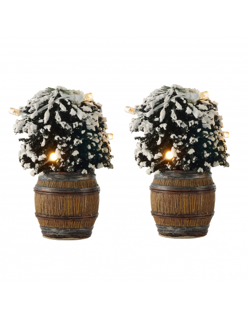 LuVille Buxus bush in barrel 2 pieces (light)